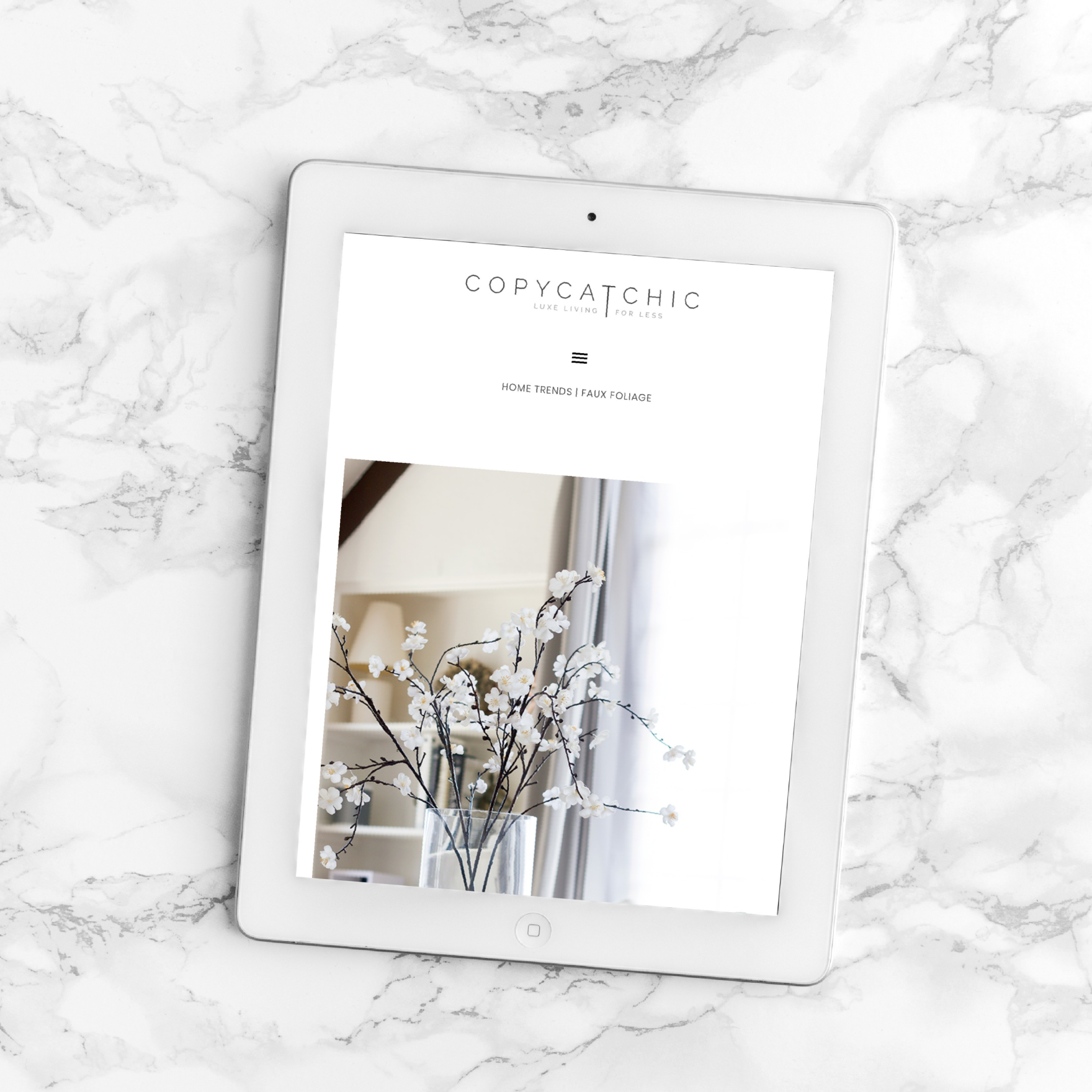 CopyCatChic Website and Ecommerce Interior Design