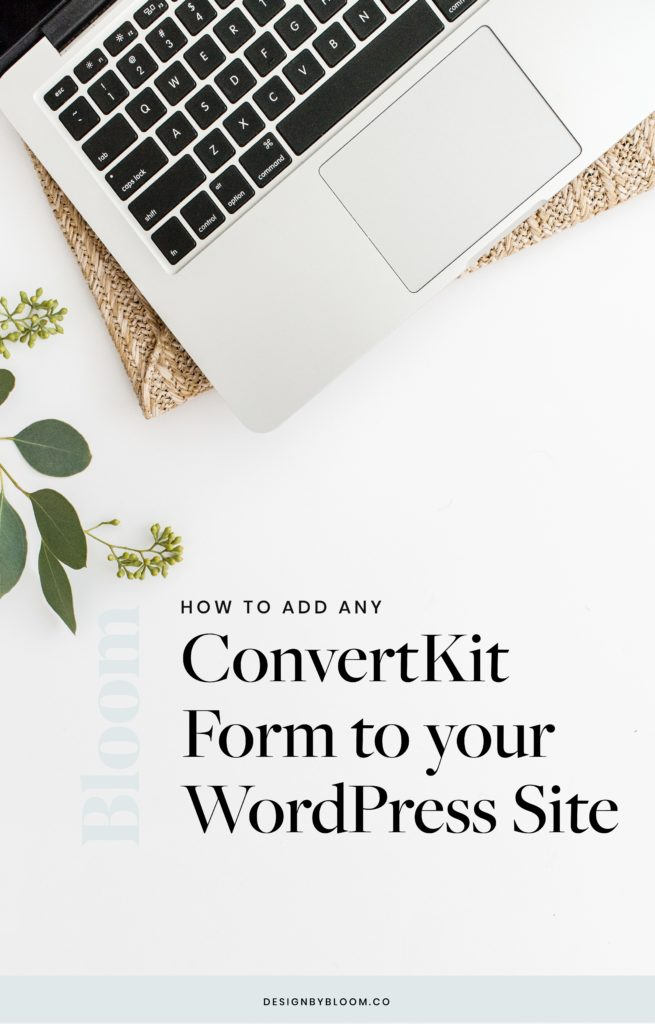How to Add A ConverKit Form to your WordPress Blog or Website-03
